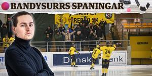 Robin Mårtensson. Bild: Linda Mårtensson / Billy Hammer