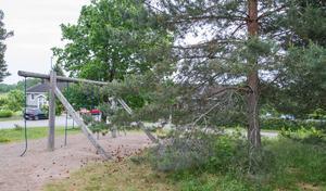 Trädgrenar hänger ut över lekparken på Prinslasses väg och skulle behöva kapas för att inget barn ska göra sig illa.