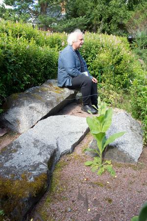 Stenar, vatten och växter är komponenter i en japansk trädgård. De gamla grundstenarna blev kvar, och kungsljusen har en fantastisk förmåga att växa trots karga förutsättningar.