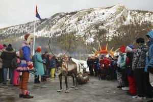 Renrajd under vårens sydsamiska festival i Funäsdalen. Toppen av berget kan få en samisk aktivitetspark.