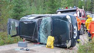 Föraren till bilen fick sladd efter att ha väjt för ett djur i Koldemo.
