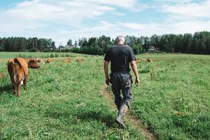 Gunnar Olsson vet inte hur länge till de ska fortsätta med mjölkproduktionen och att det låga priset gör allting mycket svårt.