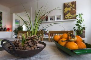 Konst och växter skapar tillsammans en inbjudande miljö.