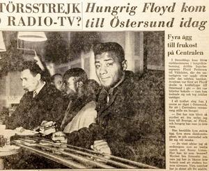 Floyd Pattersons vistelse i Vålådalen blev en följetång i länets lokaltidningar.