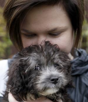 FAMILJ. Louise Sollien blev under onsdagen glada ägare till valpen Freddy – tio veckor. Freddy levde tidigare tillsammans med 30 andra hundar som alla blev rejält misskötta av en barnfamilj i Sandviken.