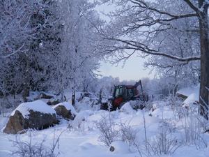 Våran morfar Carl-Erik Carlsson i sin traktor påväg att hämta hem timmer som han sågat i Lövsta-skogen.