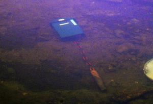En brevlåda med tungt fundament ligger kvar ett stycke ut i vattnet där man sannolikt måste ha en båt till hjälp för att kunna bärga den.Foto: Ingvar Ericsson