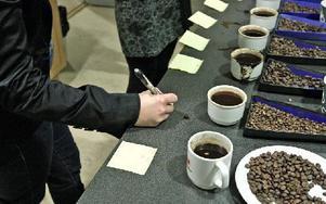 Lite kryddigt, något cirusaktigt eller en böna med drag av svartavinbär i smaken - många val väntade det kaffeprovande arbetskamraterna från Dalarna försäkringar.
