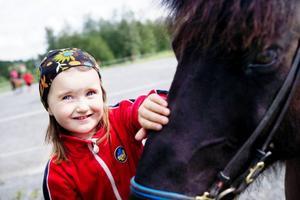 I lördagsförmiddag hade en möhippegäng varit ute på en ridtur. Efter det var en det en tur för barn, knatteridning. Ronja Eriksson, fyra år, har ridit förut. Hon borstar vant hästen hon ridit på innan den ska släppas ut i hagen.