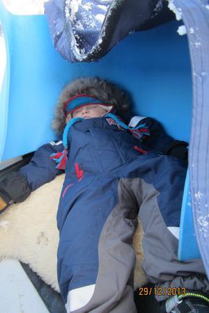 Så här trött blev mitt barnbarn Douglas när vi åkte snöscooter i Ljungdalen, han satt inklämd i pulkan mellan farmor och mormor och somnade direkt.