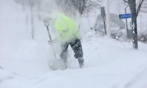 SNÖRIKT. De firmor som driver hemtjänst i Tierps kommun erbjuder snöskottning. Efter Rut-avdrag får pensionärerna ge 150–225 kronor i timmen till de företagen.