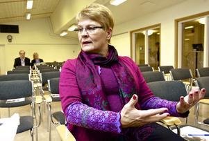 Förre Näringsministern Maud Olofsson bedömer att det fanns interna problem i Boston Power som var orsak till att det inte blev en batterifabrik i Ludvika.