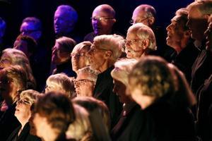 Rock och popkören 65+ startades i september i år.
