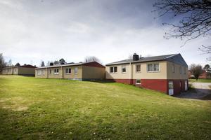 Grönt och idylliskt men inte värt att renovera. Frågan som Hudiksvallsbostäder ställer sig är om hyresgästerna vill betala för att bo i nyproducerade hus?