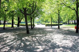 Nära parkens mitt finns en offentlig toalett sommartid.