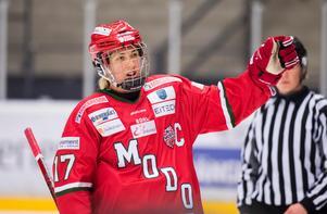 Foto: Erik Mårtensson / BILDBYRÅN.