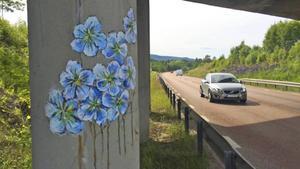 Linblommorna kan strida mot Trafikverkets krav på färg på broar.