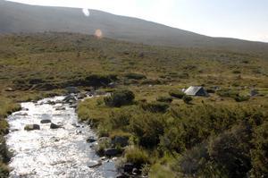 Fjällen vid Storvätteshågna är mjukt rundade och området lämpar sig väl för camping.