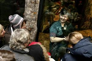 Chimpansmamma Ing-Marie Persson och Selma, hon blir sex månader i mellandagarna, har glatt massvis med julbesökare i Furuvik med en daglig uppvisning under fyra veckoslut.