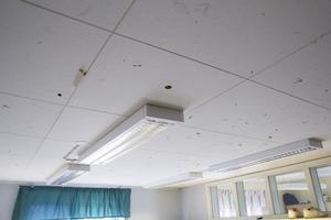 Takplattorna är en del av skolan som är utsatt för skadegörelse.