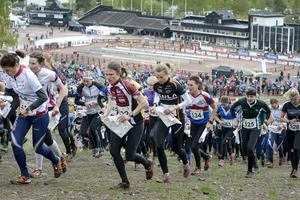 Så här såg det ut när damkaveln startade vid orienteringstävlingen tiomila i Falun på lördagen.