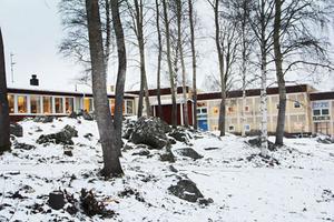 Små skogsaprtier runt skolområdet ger insynsskydd