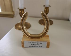 Pokalen som Thilde vann i SM.