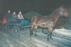 Dåvarande partikollegan Shiro Biranvand (V) fixade häst och vagn, som fick traska fram med Stig Henriksson på januarimorgonen, fram till kommunhuset den första arbetsdagen 1999.