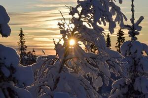 Sista solbilden innan det vänder och blir ljusare från söndag. På Nipfjället i Idre.