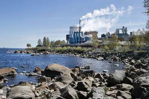 Efter olyckan på Vallviks bruk har Arbetsmiljöverket ställt krav på både bruket och chaufförens arbetsgivare gällande riskbedömning för lastning och lossning av terpentin.