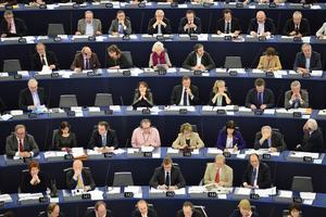 I EU-parlamentet krävs en annan typ av politiker än i riksdagen.