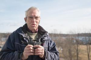 Björn Lundberg, Nynäshamns ornitologiska förening, berättar att uvarnas antal ser ut att ha minskat i kommunen.