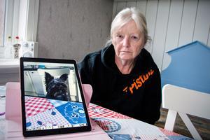 Tiden efter att Sune dog har varit svår för Kirsti Åberg.