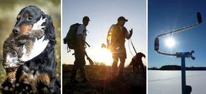Girjas sameby får ensamrätt till jakt och fiske ovan odlingsgränsen enligt dom i Högsta domstolen.