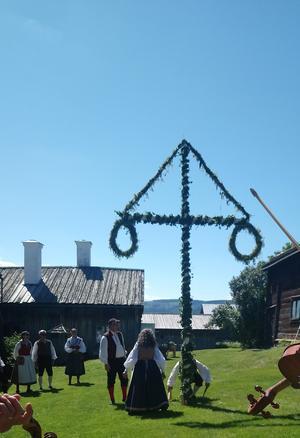 Midsommarstången smyckades och restes på gårdstunet på hälsingegården Karls i Bondarv, Järvsö.