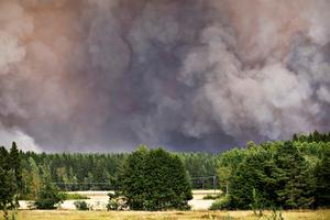 Röken från skogsbranden täcker himlen sommaren 2014.