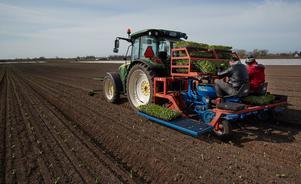 Jordbrukets företagare ges bäst förutsättningar genom lägre skatter och enklare regelverk, skriver Jessica Polfjärd (M). Foto: Andreas Hillergren / TT.