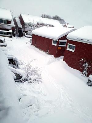 Snön låg vackert på Tibeliusgatan. Foto: Anna Malmström