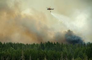 Bild från den stora skogsbranden som härjade i Västmanland 2014. Foto: Fredrik Sandberg / TT