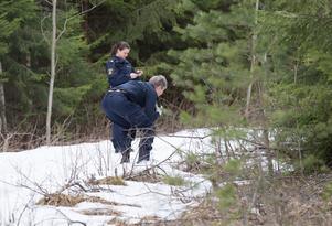 Polis och kriminaltekniker undersöker diket utmed skogsvägen där skelettdelar hittades precis intill på söndagseftermiddagen.