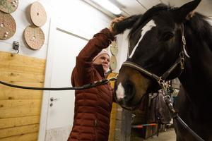 Elsa Ekman berättar att hon inte har någon plan alls när hon köper in nya tävlingshästar.