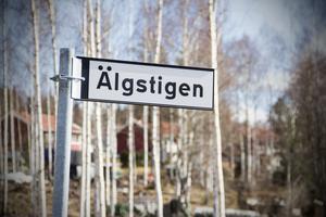 Älgstigen i Masbo, Skinnskatteberg.