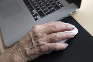 En pensionär sitter vid sin bärbara dator.  Foto: Henrik Montgomery/TT