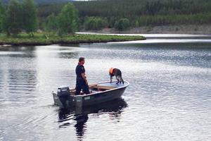 Nioåriga kriminalsökhunden Izor på väg ut för att söka efter den drunknade mannen tillsammans med polisen och hundföraren Jörgen Modin.
