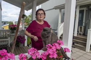 Det finns fortfarande blod kvar på sopen som Margareta Pettersson använde för att hunden skulle släppa katten ur sitt grepp, här katten Hasse.