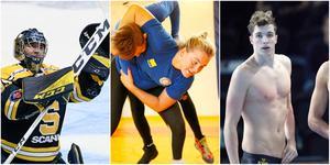 Årets kandidater till Telgebragden: George Sörensen, Denise Makota Ström och Björn Seeliger. Foton: Bildbyrån och LT.