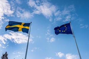 Europa behöver mer demokrati – inte mindre. Rösta för ett demokratiskt Europa, uppmanar Leif Wiklund.