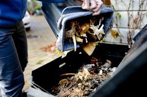 Om ett drygt år måste kommunerna samla in allt matavfall. Förbränning är inte tillåtet. Blir det inget av biogasprojektet är kompostering ett alternativ. Foto: TT