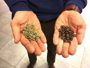 Bröderna Kaj och Dan Johdet satsar på sin kaffedröm. Här syns orostade bönor (till vänster) och färdigrostade (till höger).