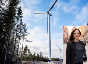 Linda Burenius, ordförande 100% förnybart, skriver om att energiöverenskommelsen borde utvecklas. (Bilden är ett montage).